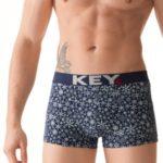 Pánské boxerky MXH 922 B8 – Key