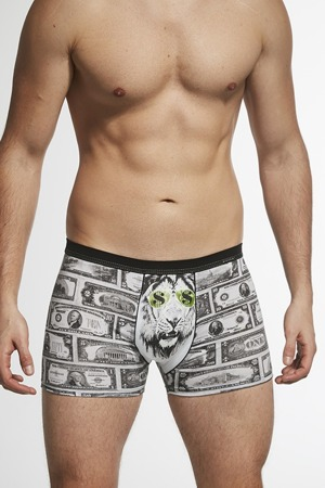 panske-boxerky-280-167-tatto-dollars.jpg